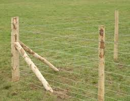 wire farm fence. Agricultural Fencing   Farm Fence Is Typically Wire With Either A Combination Of Wood .