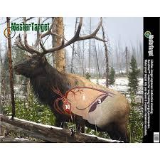 Shot Placement Elk Elk Hunting Tips Deer Hunting Tips