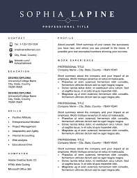 Professional Resume Template Design Editable Resume For Office