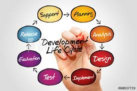 Flow Chart Of Life Cycle Development Process Business