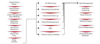 Clinical Data Management Flow Chart Clinical Trial In China China Cro Cer Service China Med