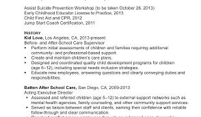 Top Resume Format Leadership Resume Template
