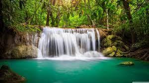 31+] Rainforest Waterfall Wallpaper on ...