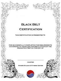 Martial Arts Certificate Templates Deluxe Martial Arts Certificate Templates On Cd Rom For Sale