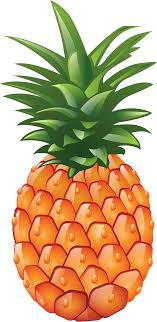 pineapple clipart black and white. pineapple clipart black and white free 2 clipartcow