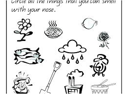 Five Senses Coloring Page Mangryinfo