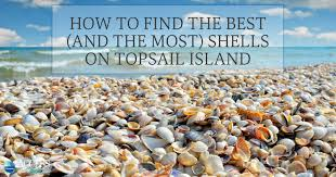 North Topsail Beach Tide Chart 2017 How To Find The Best And The Most Shells On Topsail Island
