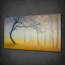 misty spring forest tree fog modern canvas print picture wall art free uk p p