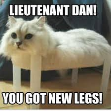 Image result for cute memes