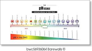 The Ph Scale Universal Indicator Ph Color Chart Diagram Art Print Poster