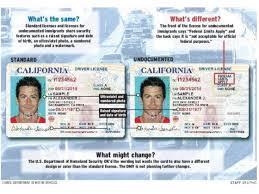 com To Here Dmv com Prepares Inlandpolitics Who Driver's inlandpolitics Are Licenses People Illegally Latimes Issue -
