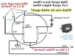 ceiling fan wall switch wiring diagram wiring diagram how to wire a light switch diagram at Wall Switch Wiring Diagram