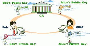 Digital Certificate Pki Digital Certificates To Create Trust In Online Transactions