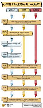 Honey Processing Flow Chart Processing Methods Washed Honey Or Natural Brewersclub