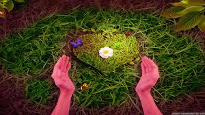 Love Nature Wallpaper - 2560x1440 ...