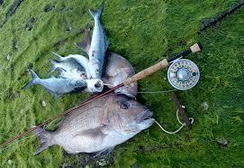 handy s and fishing diy