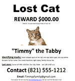 Missing Cat Poster Template Free Lost Dog Cat Missing Pet Poster Ms Word Template