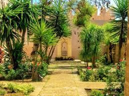moroccan garden design tips for