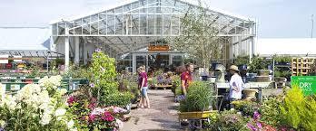 cool garden s images garden nurseries best garden s cool garden s