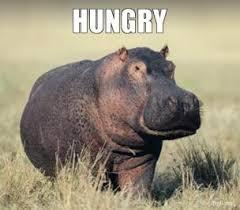 hungry-thumb.jpg via Relatably.com