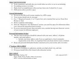 Download What Should I Put On My Resume Haadyaooverbayresort Com