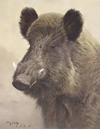 Boar Painting Malarstwo Owieckie Pinterest Wild Boar