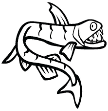 fish coloring page is one of monster fish coloring pages rainbow fish coloring pages for preers