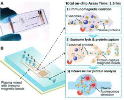 Lab On A Chip New Lab On A Chip Could Revolutionize Early Diagnosis Of Cancer