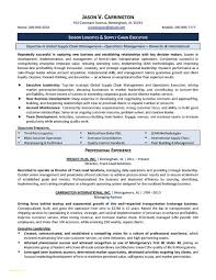 Resume Breathtaking Great Resume Templates With Top Resume Formats