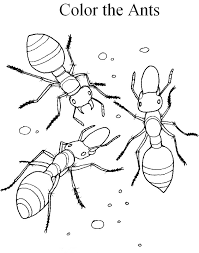 Small Picture Ant coloring pages to download and print for free