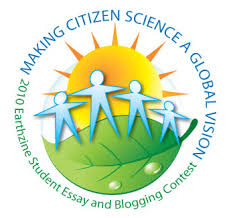 second annual college and university student essay and  2010 essay logo