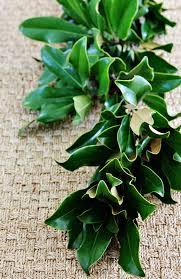 green leaf garland