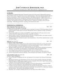 credit risk manager resume sample