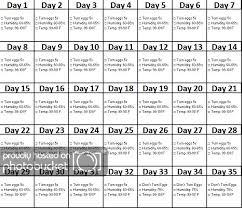 24 Scientific Duck Egg Incubation Chart