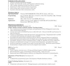 Sample Programmer Resume Free Entry Level Computer Programming Resume Template Programmer 20