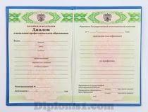 Купить диплом училища ПТУ xn bafabjiw com Перед тем как диплом лицея купить