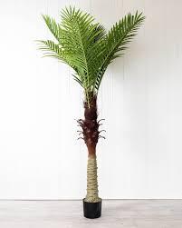 <b>Artificial Plant</b> - <b>Green</b> Palm <b>Single</b> - 150cm