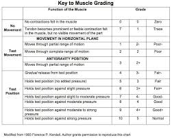 Manual Muscle Testing Range Of Motion Head And C Spine