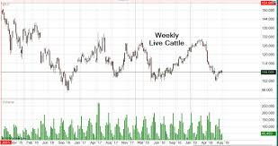 Cattle Chart Live Cattle Futures Futures Contract Prices Charts News