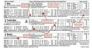 derby racing form horse racing handicapping picks tips results horse betting system