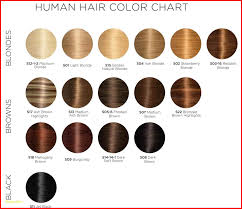 Majirel Hair Color Chart 149415 Hair Colour Chart Loreal