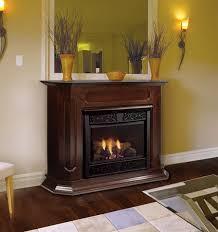 impressive ventless gas fireplaces ventless natural gas fireplaces ventless with regard to gas ventless fireplace insert popular