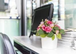 Office Flower Things To Consider Before Sending Her Flowers At Work