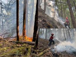 When it burns, the permafrost below it thaws more quickly, turning lush woods into impenetrable swamps. Bc Wildfire Service Working To Put Out Two More Fires That Started This Long Weekend