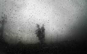 Rain Glass Window water trees rain glass storm window lonely condensation 5264 by xevi.us