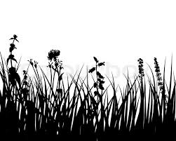 tall grass silhouette. Stock Vector Of \u0027Vector Grass Silhouettes Background For Design Use\u0027 Tall Silhouette T
