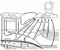 Small Picture Acumen Water Cycle Coloring Pages Widetheme Coloring Home