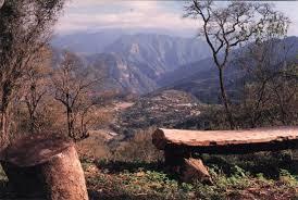 Resultado de imagen para imagenes del parque nacional calilegua