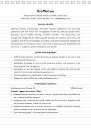 4 Finance Manager Resume Sample Ms Word Doc Format
