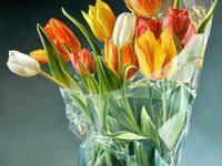 10 лучших изображений доски «Тжальф Спарнаай. Голландский ...